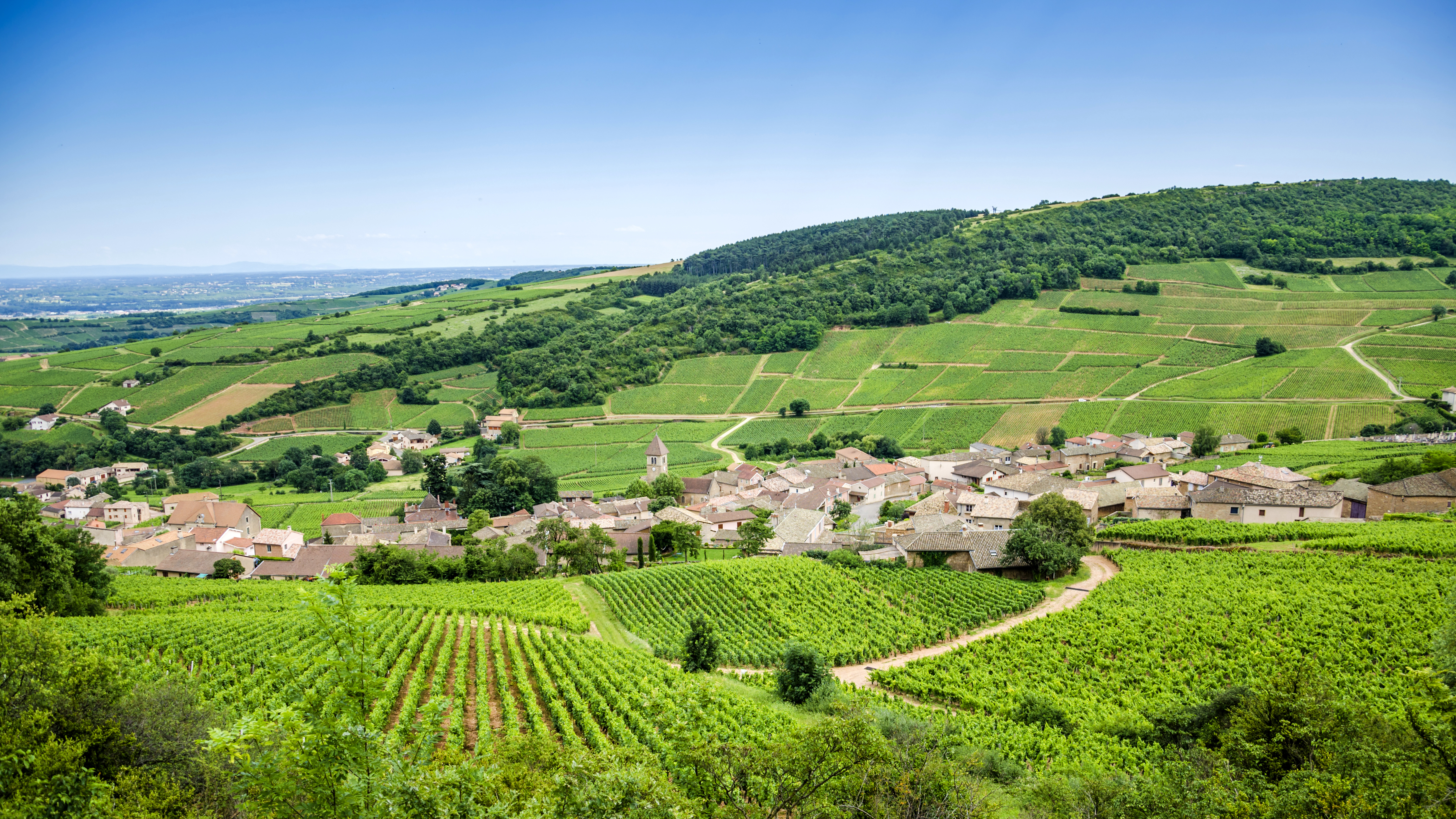 00092f_france_burgundy_Wine-Village-4575c77963fa7278cf55687134825c0c