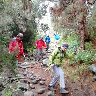 Guided walkers in the Canary Isles, Spain.