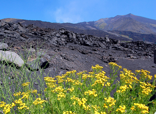 View of Mt Etna on Sicily's eastern coast