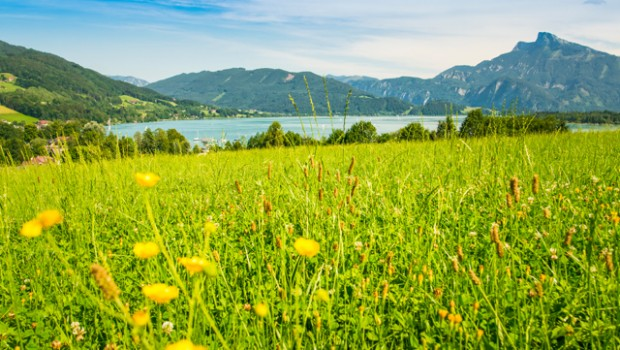 View of Lake Mondsee. © auergraphics | AdobeStock
