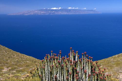 javiersanp-flickr-la-gomera-island