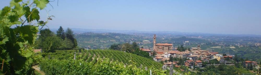 The Vineyards of Piedmont