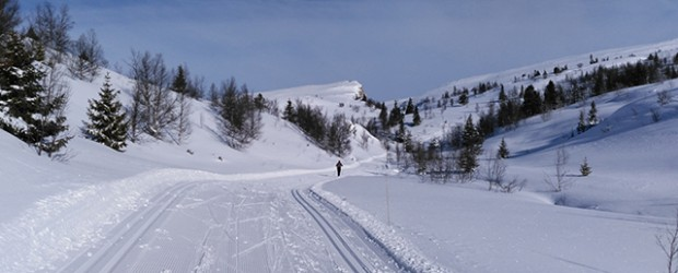 Cross-country skiing, Venabu, Norway