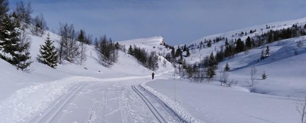 Cross-country skiing, Venabu, Norway