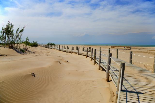 000e2d_spain_catalunya_Riumar-beach-Delteb-116311fb2723eee8270ffefc9ca24e5e