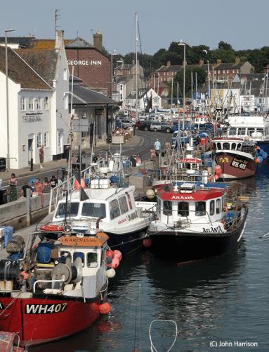 IMG_8754 Weymouth