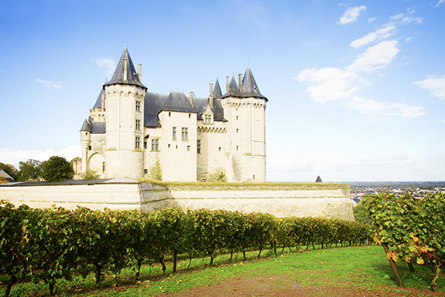 Chateau Saumur and vineyards in the Loire Valley, France. Photo: Neirfy.