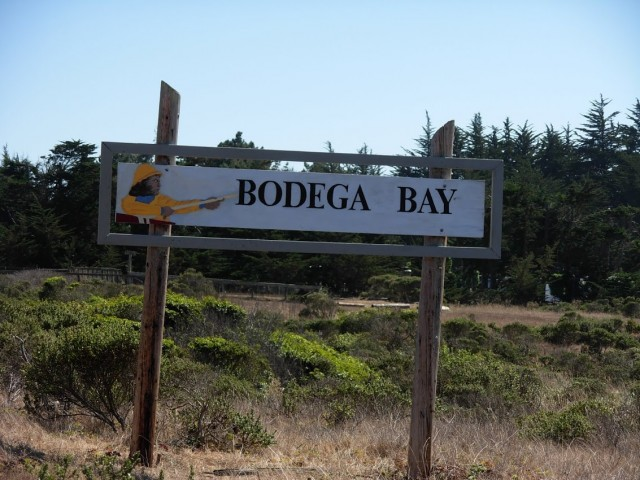 coast road south to bodega bay california