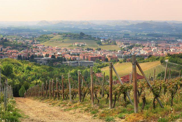 Overlooking Alba, Piemont, Italy