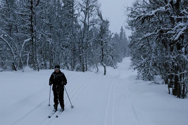 Cross-country skiing, Venabu
